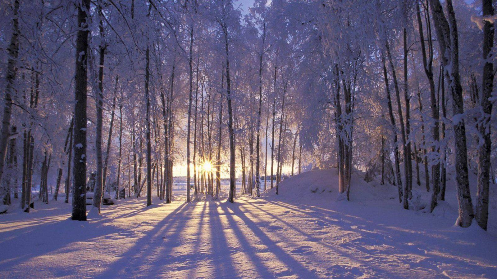 Resultado de imagen de nieve