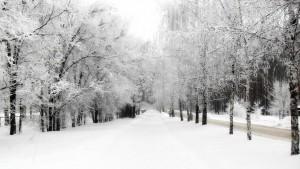 curso fotografia madrid nieve